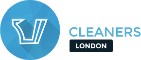 Gutter Cleaners London